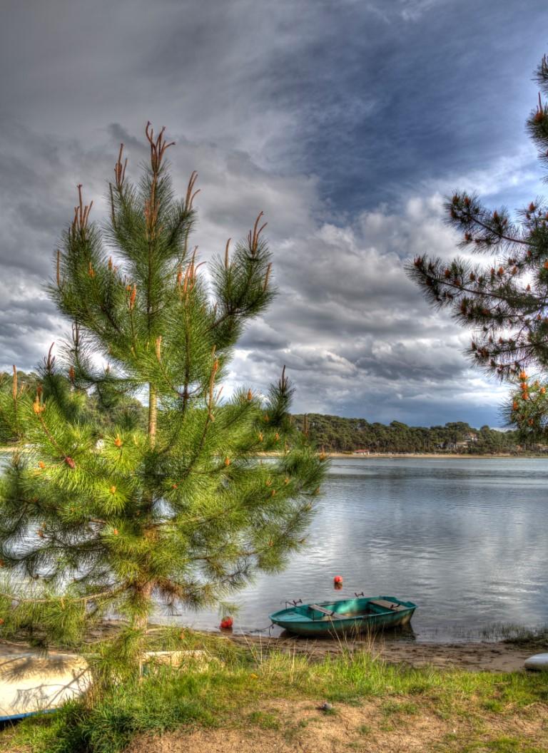 Les bords du lac
