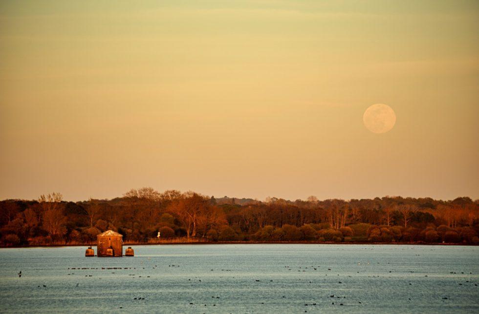 Levée pleine lune sur la marais d'Orx